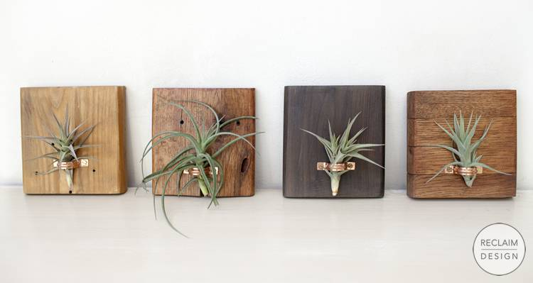 Reclaimed Wood and Copper Airplant Displays | Reclaim Design