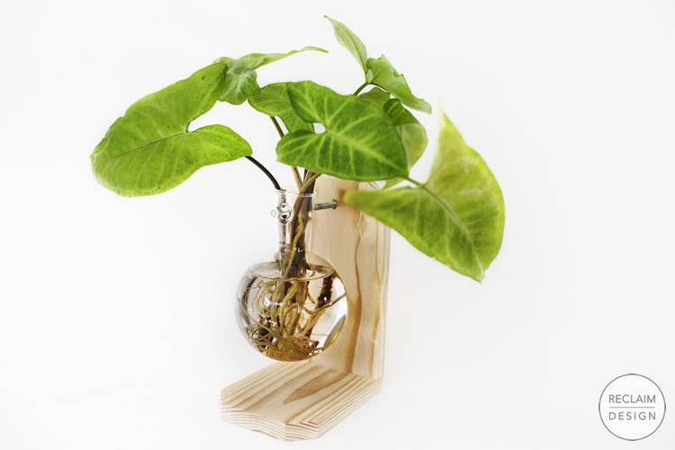 Floating globe clear vase with sustainable reclaimed wood stand | Reclaim Design