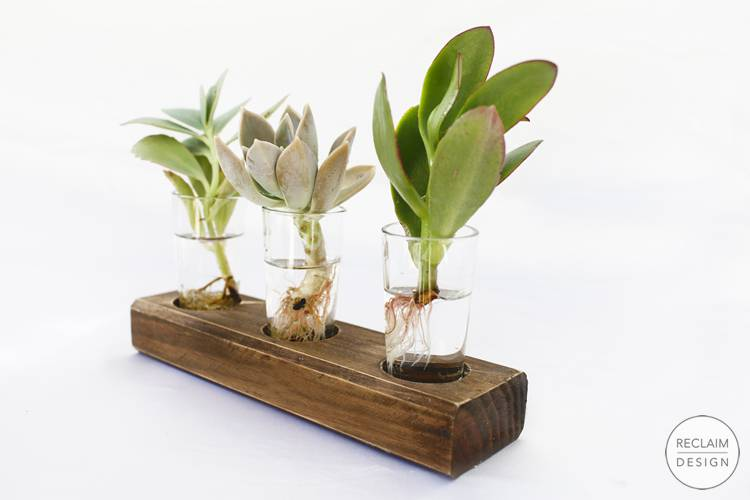 Sustainable succulent display gift set made with reclaimed wood | Reclaim Design