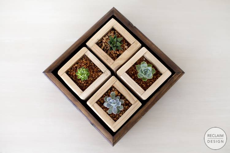 Sustainable succulent garden box set made with reclaimed wood | Reclaim Design