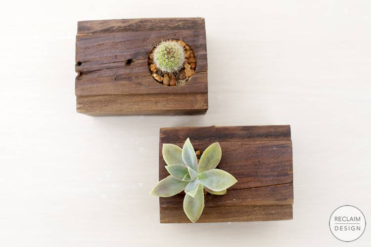 Sustainable succulent gardens made from reclaimed wood | Reclaim Design